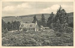 TONLEY COTTAGE, TILLYFOURIE