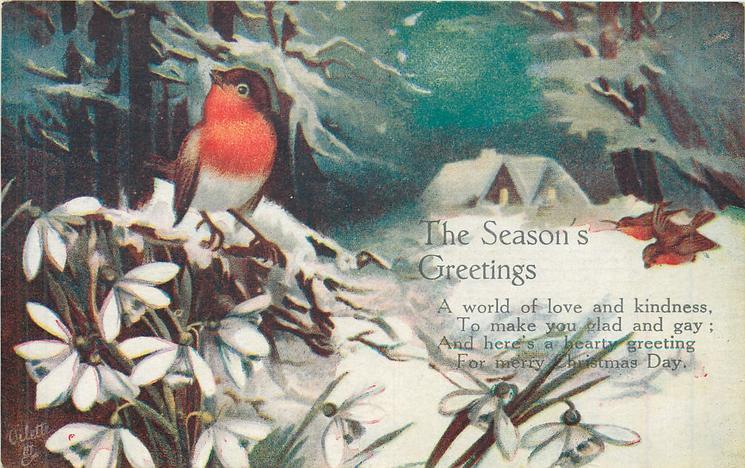 THE SEASON'S GREETINGS  3 robins, snowdrops