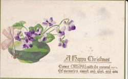 A HAPPY CHRISTMAS violets, left, in bulbous green vase