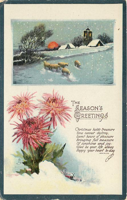 THE SEASON'S GREETINGS inset church & sheep in snow, chrysanthemums below