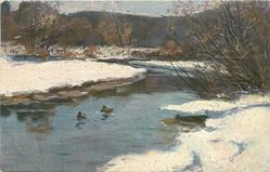 snow, two ducks on river