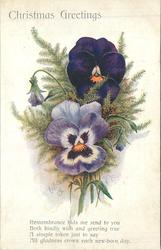CHRISTMAS GREETINGS  verse, pansies & foliage