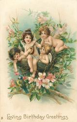 LOVING BIRTHDAY GREETINGS  four cherubs in nest, one holds mandolin