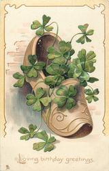 light brown shoe containing 4 leaf clovers