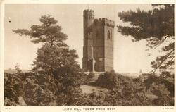 LEITH HILL TOWER FROM WEST