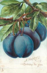 A HAPPY BIRTHDAY TO YOU four plums hanging