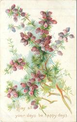 MAY ALL YOUR DAYS BE HAPPY DAYS reddish purple berries on tree-like branches