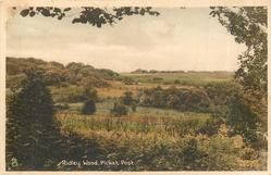 RIDLEY WOOD, PICKET POST