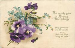 TO WISH YOU A HAPPY BIRTHDAY  pansies & forget-me-nots