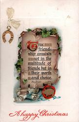 TRUE FRIENDSHIP CONSISTS NOT IN THE MULTITUDE OF FRIENDS BUT IN THEIR WORTH AND CHOICE