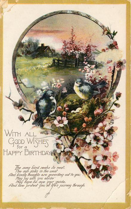 WITH ALL GOOD WISHES FOR A HAPPY BIRTHDAY rural vignette, two blue-tits & nest on blossom branch