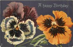 A HAPPY BIRTHDAY  two pansies: white and purple left, orange right