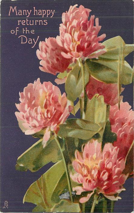 MANY HAPPY RETURNS OF THE DAY red clover