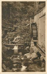 THE OLD MILL WHEEL OF MENSTRIE