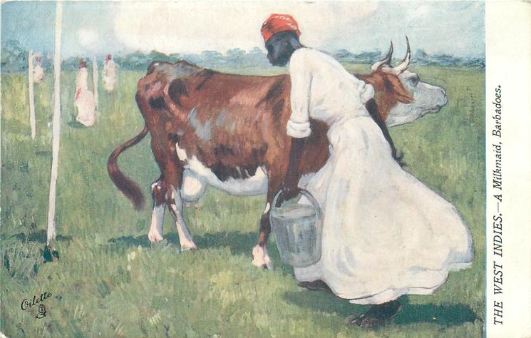A MILKMAID, BARBADOES
