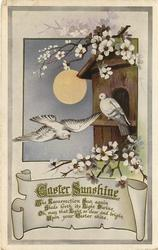 EASTER SUNSHINE two doves, one flying another perched, moon, blossoms