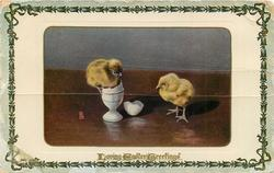 LOVING EASTER GREETINGS  two chicks, one newly hatched stands on egg cup