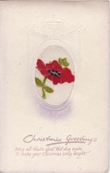 CHRISTMAS GREETINGS  red poppy