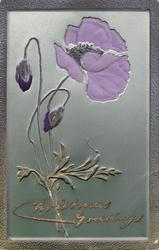 CHRISTMAS GREETINGS in gilt, purple anemones, two buds left, one open right