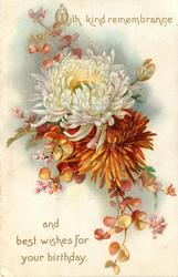 WITH KIND REMEMBRANCE AND BEST WISHES FOR YOUR BIRTHDAY  chrysanthemums & purple flowers