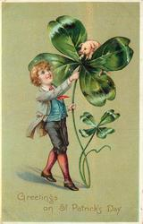 GREETINGS ON ST. PATRICK'S DAY  boy with exaggerated 4 leaved clovers pig