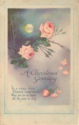 A CHRISTMAS GREETING branch of roses with full moon behind