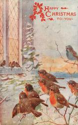 seven birds singing on tree branch right, another four on church window sill