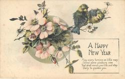 A HAPPY NEW YEAR  pink dog roses & two birds