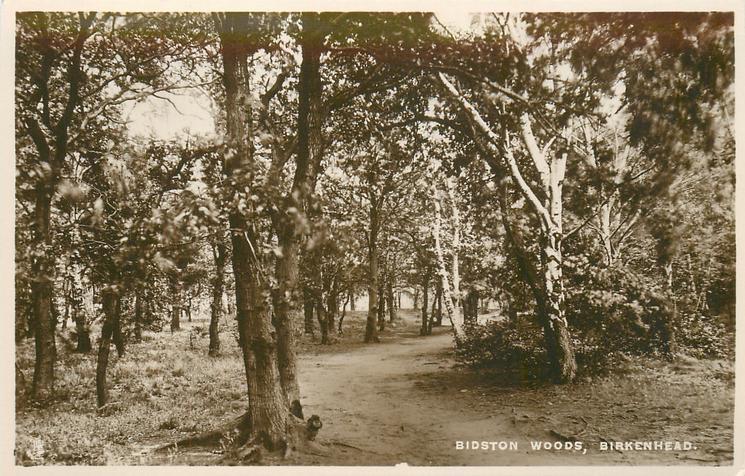 BIDSTON WOODS
