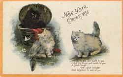 NEW YEAR GREETINGS 3 cats & one butterfly