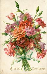 A HAPPY NEW YEAR  bunch of carnations, pink and red