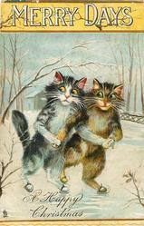 MERRY DAYS two cats ice skate