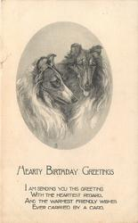 HEARTY BIRTHDAY GREETINGS two collies