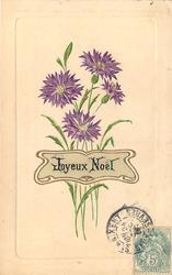JOYEUX NOEL purple bachelor's buttons