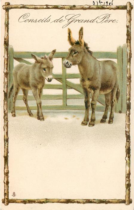 CONSEILS DE GRAND PERE two donkeys stand in front of green wooden gate