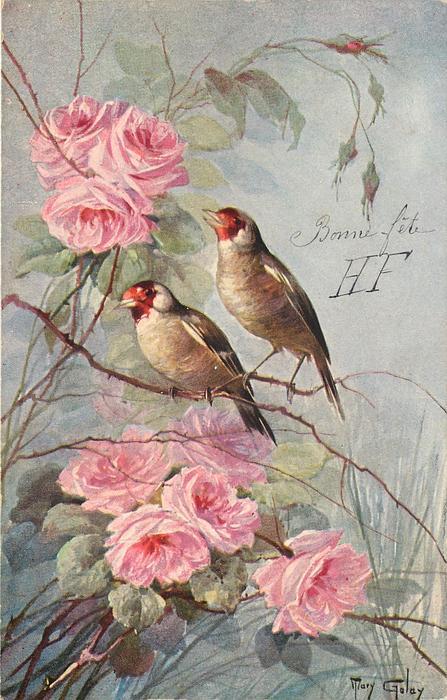 two birds face slight left, pink flowers