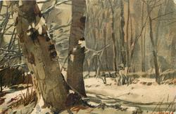 snowy forest, two tree trunks prominent left