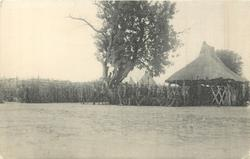 A NATIVE COURT OF JUSTICE, LATUKA TRIBE, SOUTHERN SUDAN