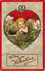 TO MY VALENTINE  small cherub in birds-nest