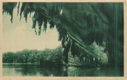 RIVER CAVE, PANG NGA