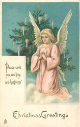 CHRISTMAS GREETINGS  angel in front of Xmas praying