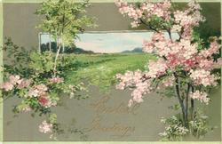 EASTER GREETINGS pink blossoms right, silver birch & blossom bush left, meadow inset