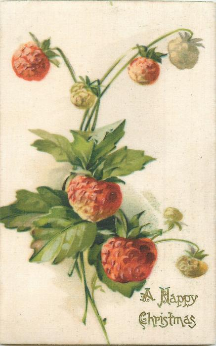 A HAPPY CHRISTMAS in gilt,  strawberries