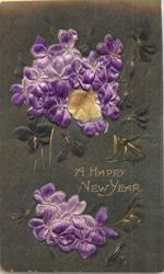 A HAPPY NEW YEAR  two bouquets of violets