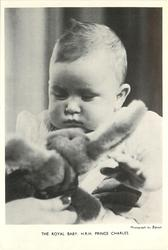 THE ROYAL BABY, H.R.H. PRINCE CHARLES baby looking down at a plush rabbit