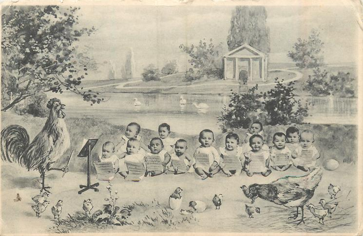 babies, seated as choir, cockerel conductor, chicks & hen lower front