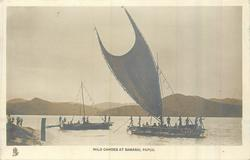 MILO CANOES AT SAMARI, PAPUA