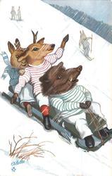 boar, deer, rabbit toboggan down hill
