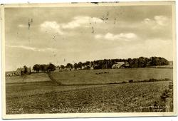 GENERAL VIEW OF WHITERASHES