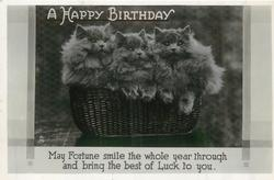 A HAPPY BIRTHDAY basket of grey kittens